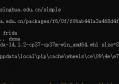 Frida hook Android-server的安装